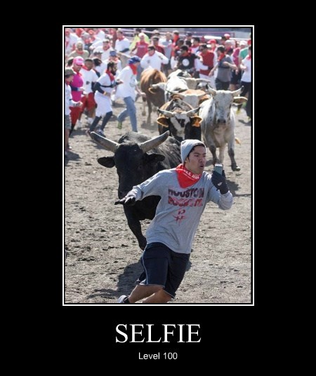 wtf,running of the bulls,selfie,idiots,funny