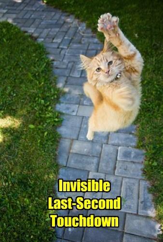 Cheezburger Image 8034076416