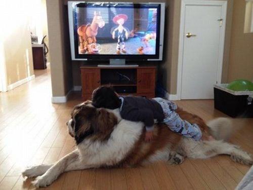 cute dogs kids snuggle bark-a-lounger - 8034471168