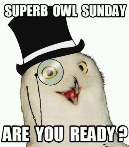 nfl,suberb owl