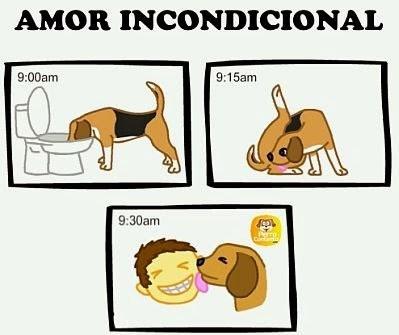 Memes animales perros - 8035083520