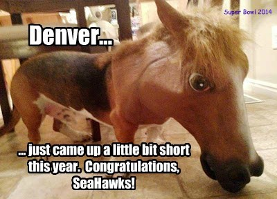 Denver... ... just came up a little bit short this year. Congratulations, SeaHawks! Super Bowl 2014
