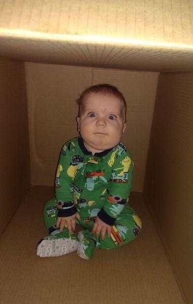 Babies,boxes,parenting