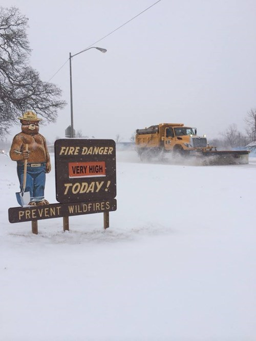 snow,forest fires,weather,Smokey the Bear