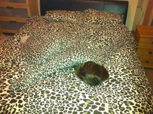 poorly dressed leopard print camouflage beds - 8036128768