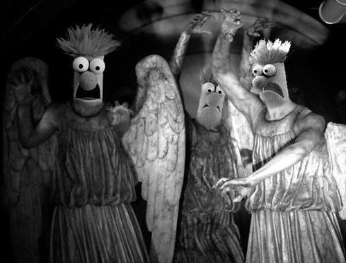 beaker,muppets,weeping angels,dont-blink