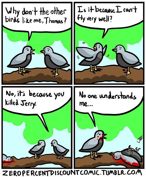 birds understanding web comics - 8036441600