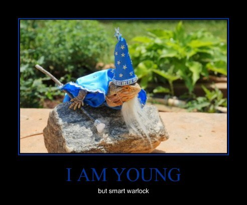 I AM YOUNG but smart warlock
