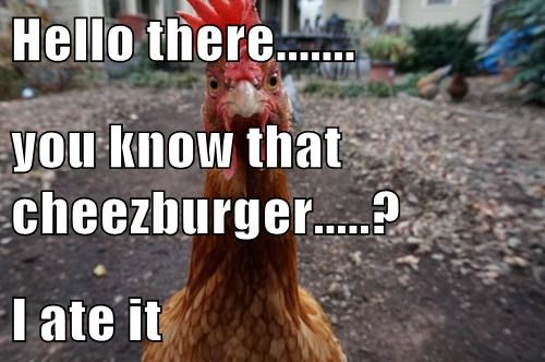 Cheezburger Image 8036653568