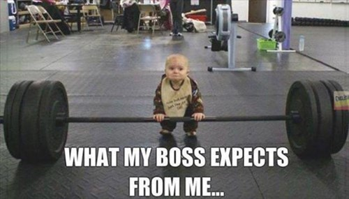 monday thru friday,Babies,bosses,work,weights
