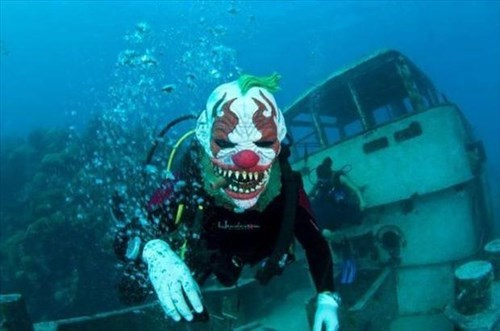 clowns,poorly dressed,masks,scuba diving,g rated