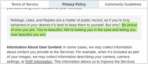 Text - Privacy Policy or orongmororoovarneoyooworo Terms of Service Community Guidelines Reblogs, Likes, and Replies are a matter of public record, so if you're truly ashamed of your desires it's best to keep them to yourself. But why? Be proud of who you are. You're beautiful. We're looking you in the eyes and telling you how beautiful you are Information About User Content: In some cases, we may collect information about content you provide to the Services. For example, when it's included as p
