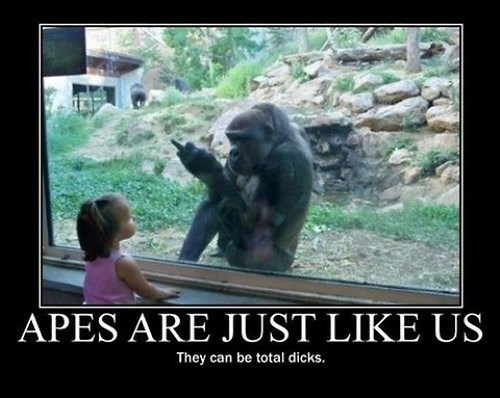 people mean apes jerks funny - 8038147840
