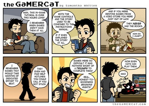 the gamer cat,video games,web comics