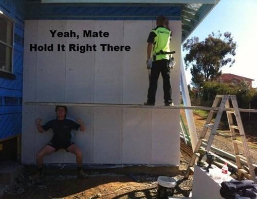 monday thru friday work construction g rated - 8039816704