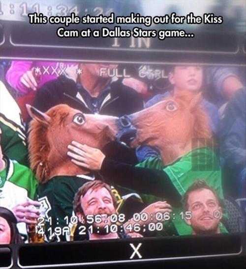 horse face Kiss Cam - 8040011776