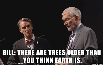 trees young earth creationism science funny magic - 8040252160