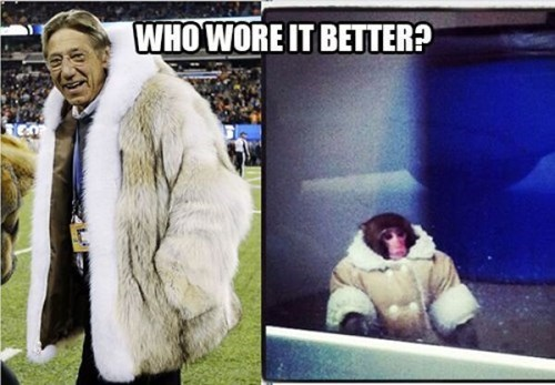 joe namath monkeys fur coat super bowl XLVIII - 8040412416
