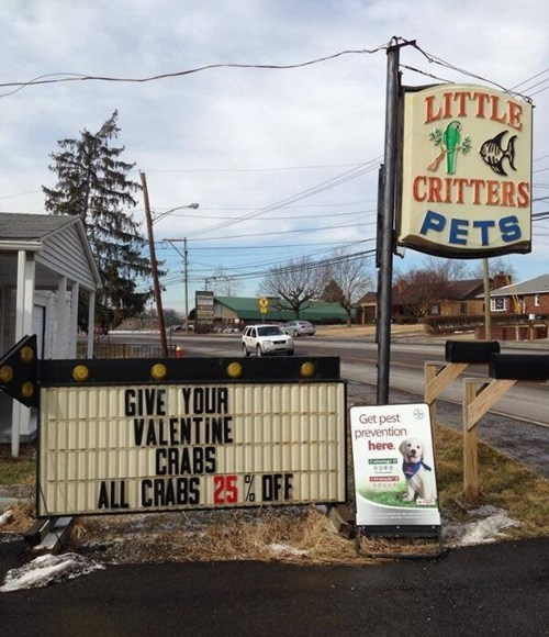 signs crabs pet shop funny Valentines day dating - 8042361856
