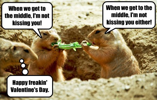 When we get to the middle, I'm not kissing you! When we get to the middle, I'm not kissing you either! Happy freakin' Valentine's Day.