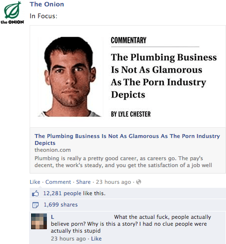the onion,plumbing,facepalm,parody,pr0n