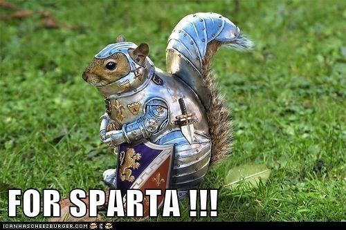 squirrels sparta armor funny - 8043979776
