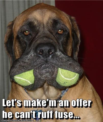 dogs tennis balls parody god father - 8044115200