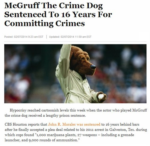news,Probably bad News,irony,scruff mcgruff