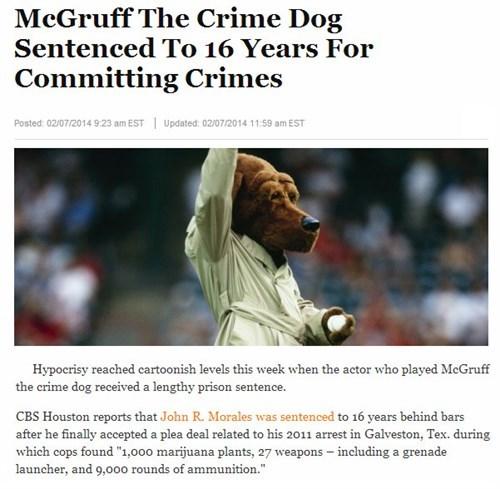 news Probably bad News irony scruff mcgruff - 8046193920