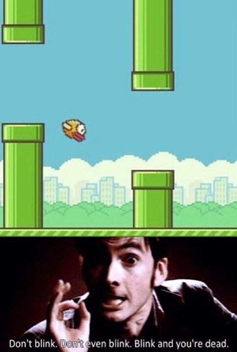 flappy bird 10th doctor dont-blink - 8046823168