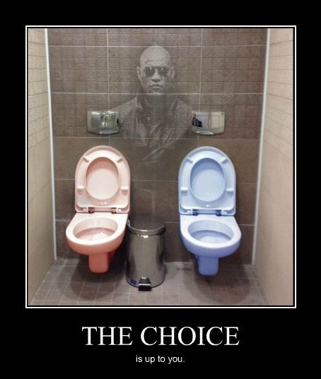 the matrix Morpheus toilet funny