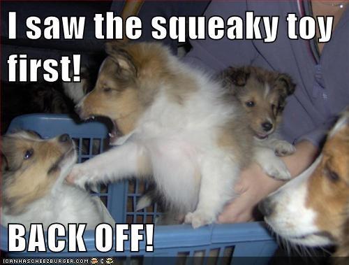 kids puppies fight - 8049877760