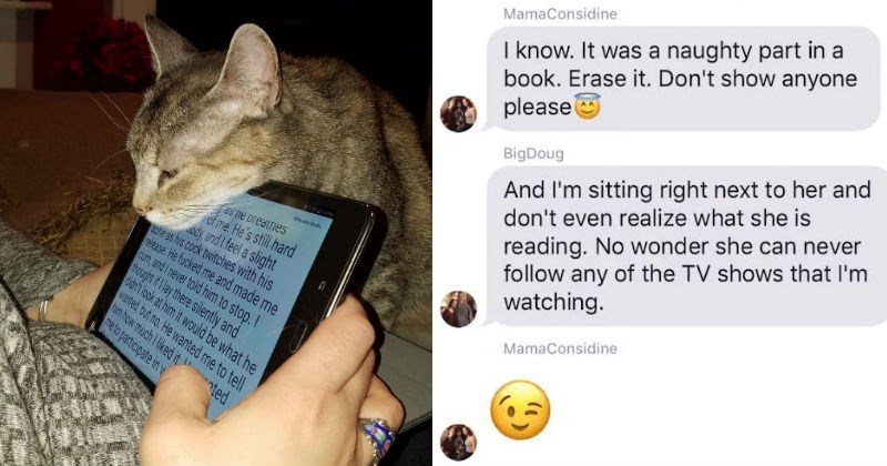 reading erotica in front of a cat
