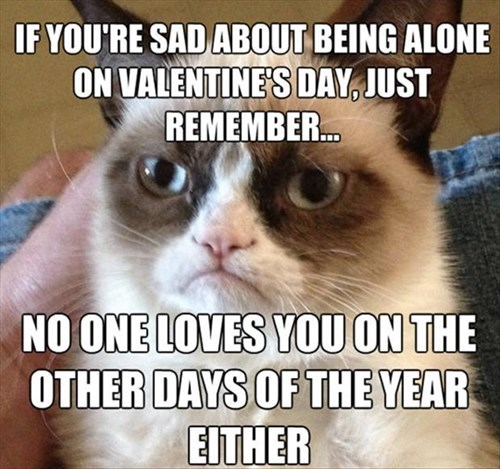 Grumpy Cat Cats Valentines day - 8052272384