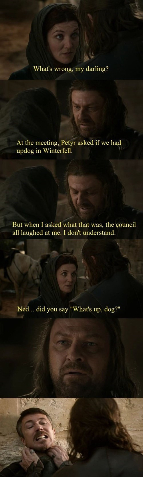 Game of Thrones updog - 8053810176