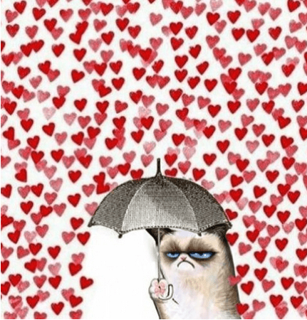 Grumpy Cat angry love funny Valentines day g rated dating - 8053838592