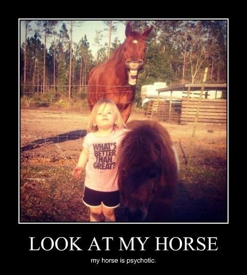 scary creepy funny horse - 8053850624