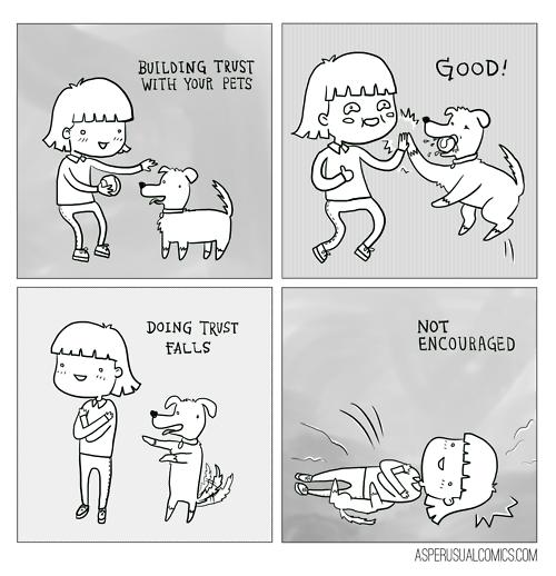 pets,web comics