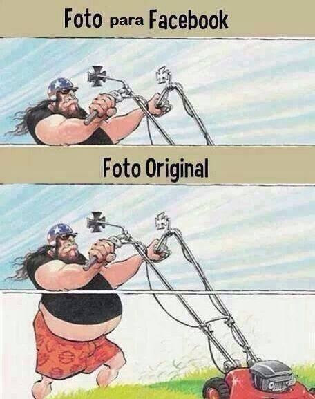 Memes fotos medios - 8055515392