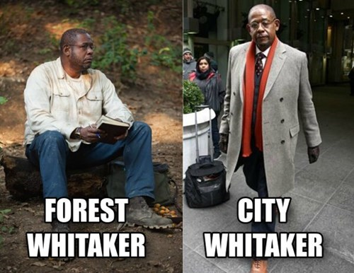 Forest Whitaker funny celeb