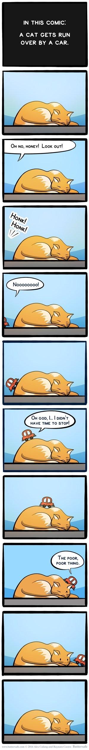 cute Cats web comics - 8056127232