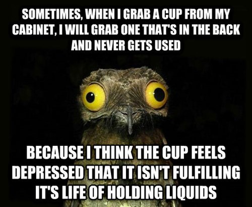 inanimate objects,cups,peculiar potoo