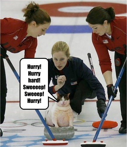 Hurry! Hurry hard! Sweeeep! Sweeep! Hurry!
