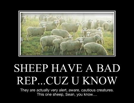 SHEEP HAVE A BAD REP...CUZ U KNOW