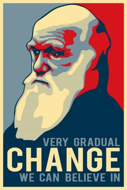 evolution Darwin science funny - 8058083840
