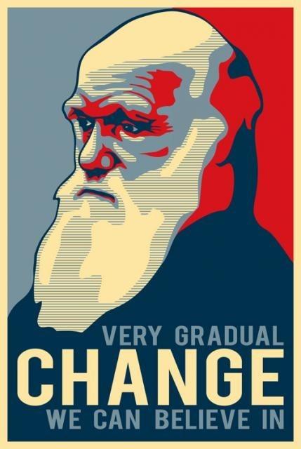 evolution Darwin science funny - 8058083840
