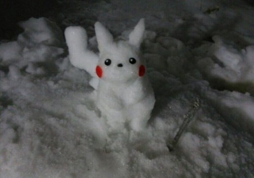 snow,IRL,pikachu