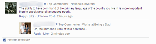language irony spelling - 8059548416