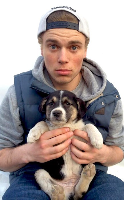 Olympic Freeskier Gus Kenworthy Seeks to Adopt Sochi Stray Dogs