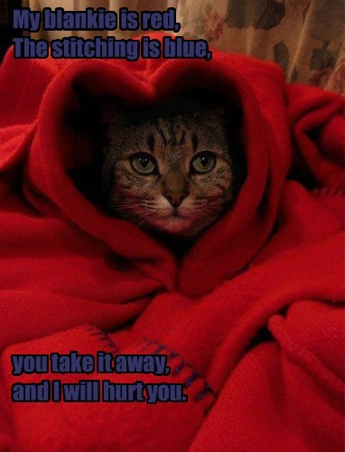 My blankie is red, The stitching is blue, you take it away, and I will hurt you.